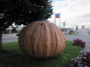 Pumpkin - Vernal, UT
